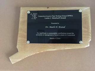 Mark Brand Award