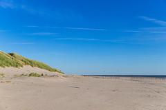 Beach of Ameland Netherlands
