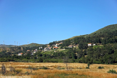 Cotelo - Portugal 🇵🇹