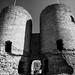 Rhuddlan Castle entrance mono
