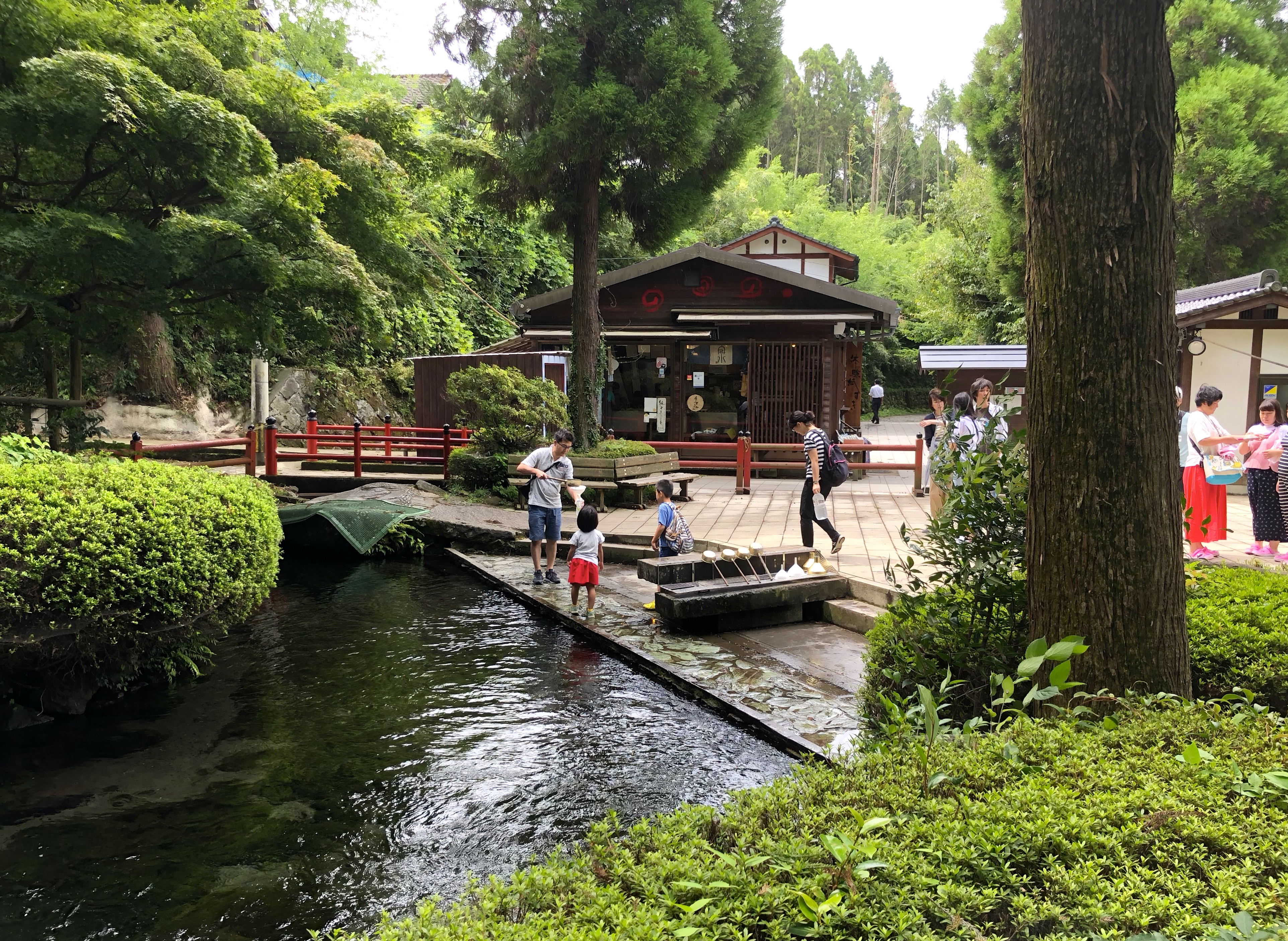 Aso, Kurokawa, japan 2018 15