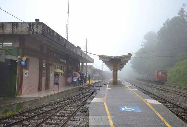 alishan forest tour Fenqihu Station