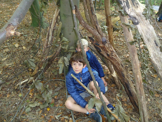 HAWL2 Naar het bos