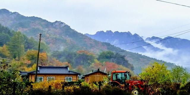 가을비 내린 아침풍경, 몽유도원도가 따로 없다