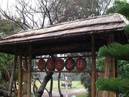 新竹古農休閒農場.桃園新屋綠色隧道