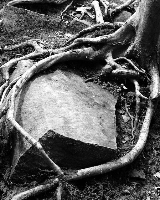 Cuyahoga Valley National Park, Panasonic DMC-L1, OLYMPUS DIGITAL 14-54mm Lens