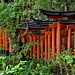 Japan: Kyoto, Fushimi Inari shrine torii by Henk Binnendijk