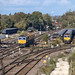 66434 and 66040 Milford Sidings