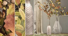 hive // autumnal plant set | fifty linden friday