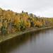 Automne, autumn - Rivière Duloup, P.Q., Canada - 7604