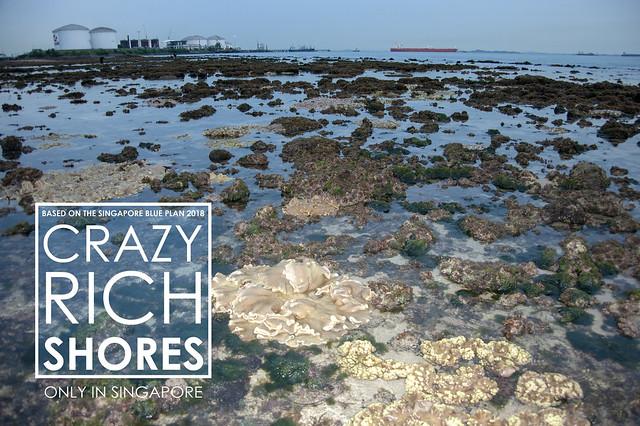 Crazy Rich Shores: Pulau Jong