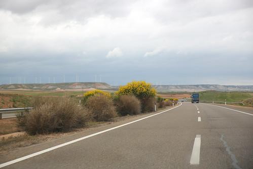Brem langs de snelweg