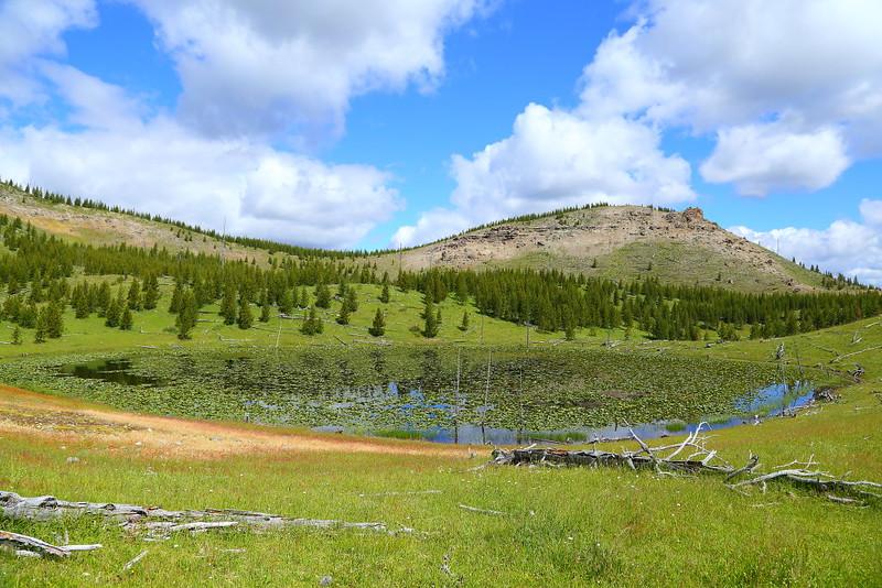 IMG_7991 Fairy Falls Trail