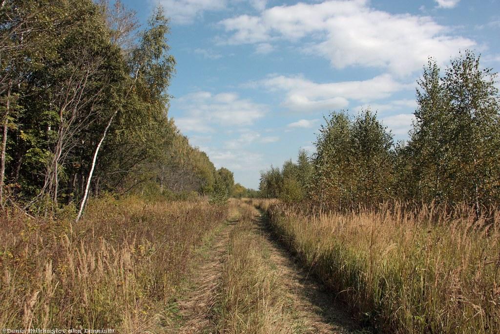 Московская область, Ступинский район.