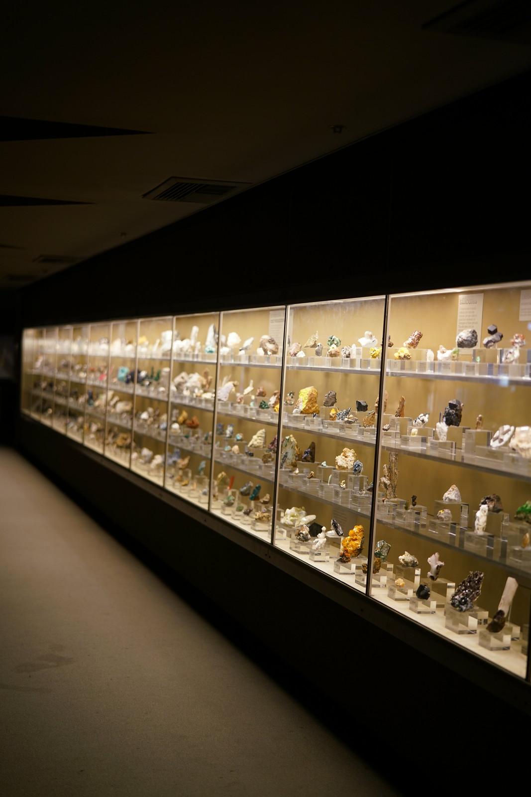 Museum of Natural History LA