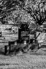 Sylvan Abbey Cemetery (5)