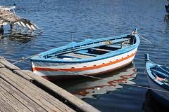 blu boat