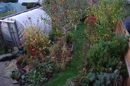 Looking Down on the Back Garden - October 2018
