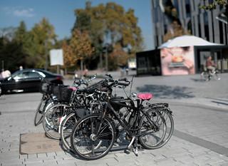 autumn light on bike parking 2