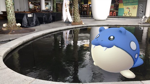 363 Spheal (position=right)