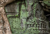 Traces of Ta Prohm