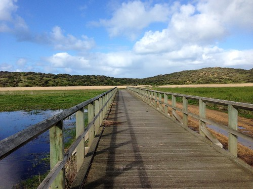 Wooden bridge crossing wetlands, Warrnambool