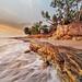 Follow the tide by Louise Denton