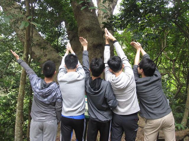 生生不息的荔枝窩2 (1)