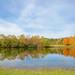Autumn Colors by glenda.suebee