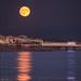 Last night's moon over Brighton by - Andy Gardner -