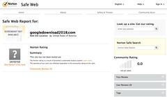 No Website Report on Norton