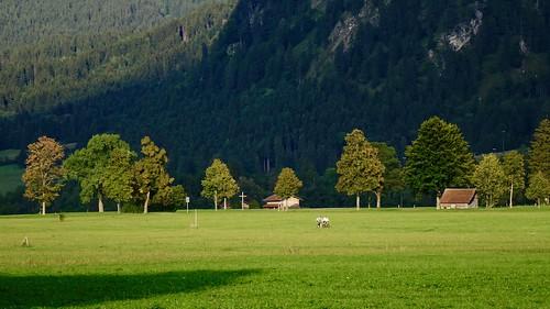 Bavaria 02