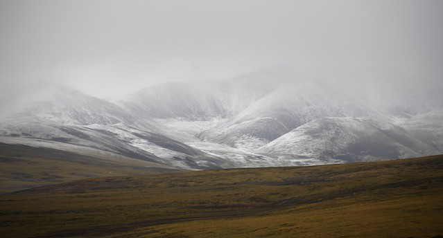 Misty cold landscape, Tibet 2018