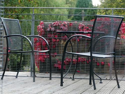 Roof Terrace - Jesmond Dene