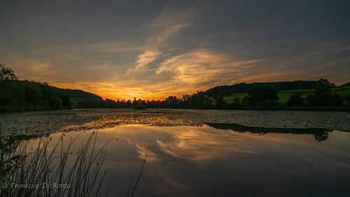 sunrise on the pond 5.)1809-352