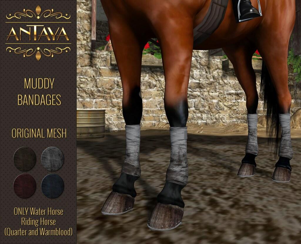 :: ANTAYA :: WHRH Muddy horse bandages