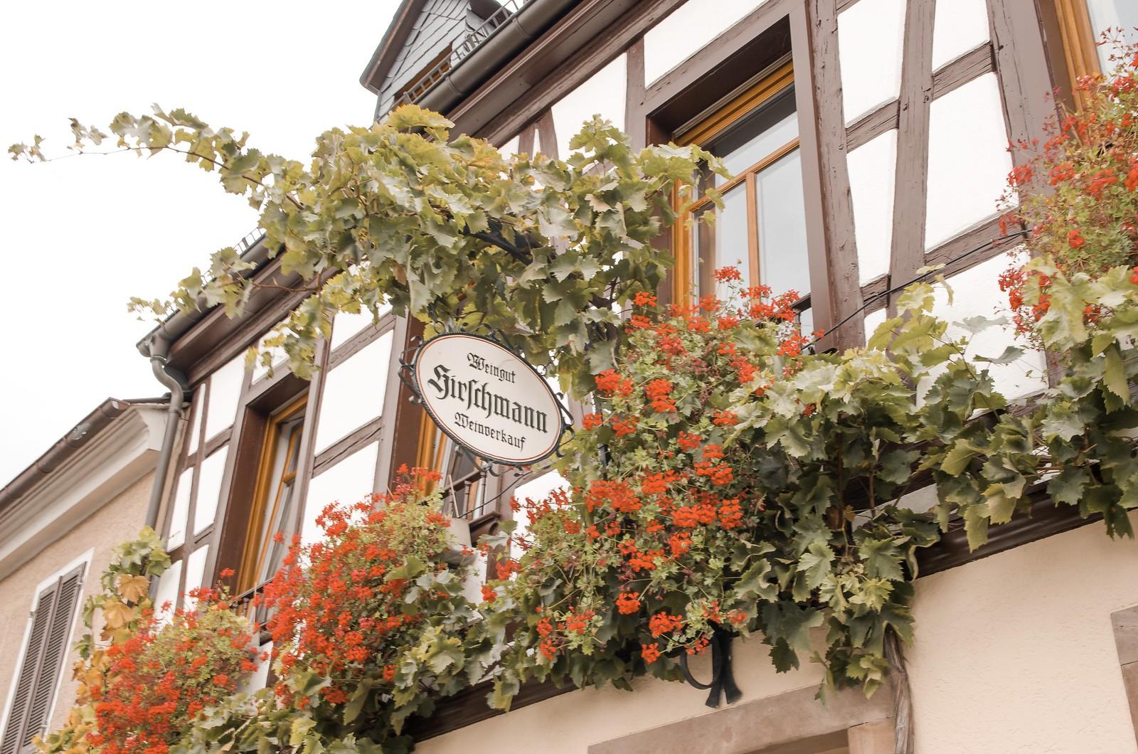 Viaje a región vinícola de Rheingau | ©mvesblog