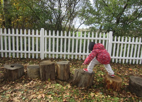 big steps on stumps