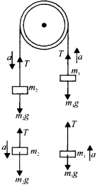 NCERT Solutions for Class 11 Physics Chapter 5 Law of Motion 17