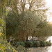 Springwell Lake | The Three Doctors locations | Doctor Who-18