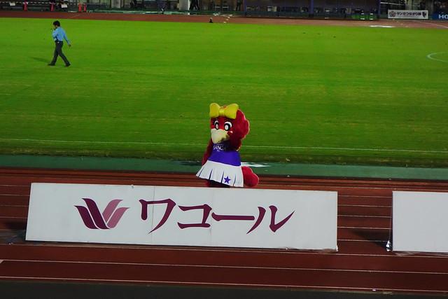 2018J2第34節京都vs栃木#10 (2018/09)