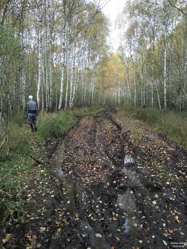 Дорога к оз. Верхнее