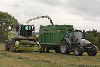 Claas Jaguar 890 SPFH filling a Thorpe Trailer drawn by a Hurlimann XL 150.7 Tractor