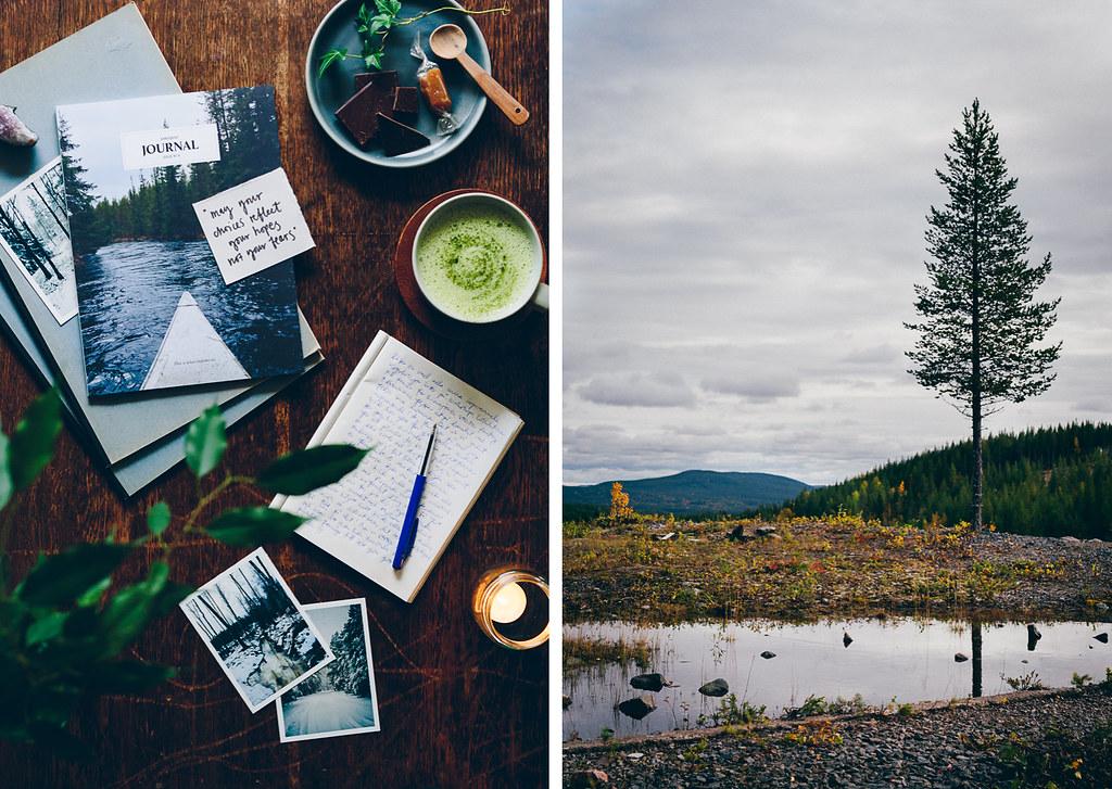 My Blog Journey | Cashew Kitchen