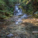 Olallie Creek Falls by writing with light 2422 (Not Pro)