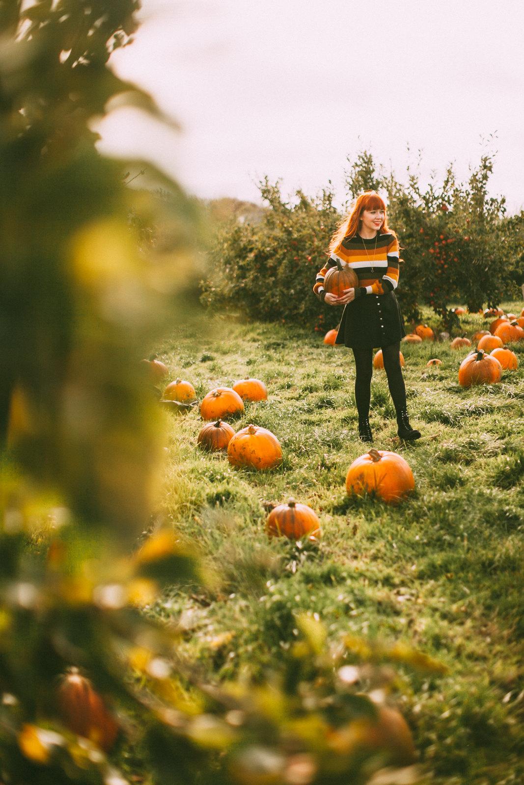 pumpkins-27