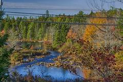 The B.L.T Trail - Autumn
