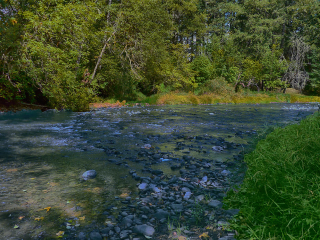 Mohawk River. Marcola, OR, Panasonic DMC-GH1, Lumix G Vario HD 14-140mm F4.0-5.8 Asph. Mega OIS