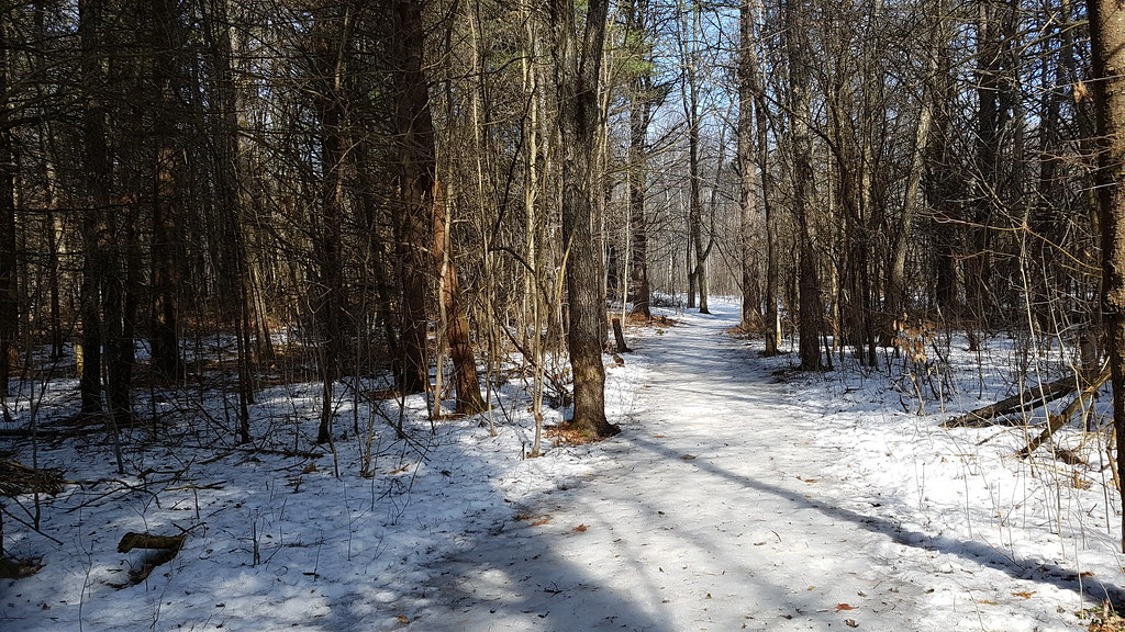 Long Sault Conservation Area