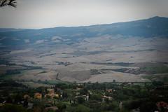Volterra 11